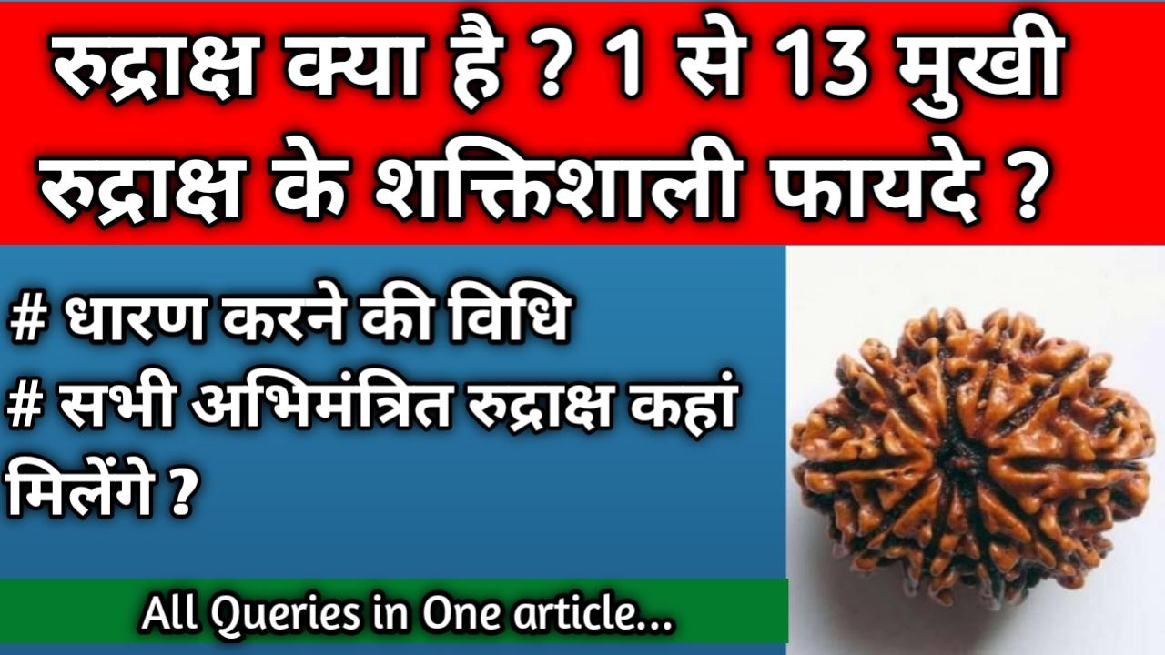 रुद्राक्ष क्या है और इसके फायदे, रुद्राक्ष पहनने के फायदे और नुकसान, रुद्राक्ष धारण करने की विधि, एक मुखी रुद्राक्ष के फायदे, 1mukhi rudraksha benefits in hindi, दो मुखी रुद्राक्ष के फायदे, 2mukhi rudraksha benefits in hindi, तीन मुखी रुद्राक्ष के फायदे, 3 mukhi rudraksha benefits in hindi, चार मुखी रुद्राक्ष के फायदे, 4 mukhi rudraksha benefits in hindi, पांच मुखी रूद्राक्ष के फायदे, 5 mukhi rudraksha benefits in hindi, 6 मुखी रुद्राक्ष के फायदे, 6 mukhi rudraksha benefits in hindi, सात मुखी रुद्राक्ष के फायदे, 7 mukhi rudraksha benefits in hindi, आठ मुखी रुद्राक्ष के फायदे, 8 mukhi rudraksha benefits in hindi, नव मुखी रुद्राक्ष के फायदे, 9 mukhi rudraksha benefits in hindi, दस मुखी रुद्राक्ष के फायदे, 10 mukhi rudraksha benefits in hindi, ग्यारह मुखी रूद्राक्ष के फायदे, 11 mukhi rudraksha benefits in hindi, बारह मुखी रूद्राक्ष के फायदे, 12 mukhi rudraksha benefits in hindi, तेरह मुखी रुद्राक्ष के फायदे, 13 mukhi rudraksha benefits in hindi