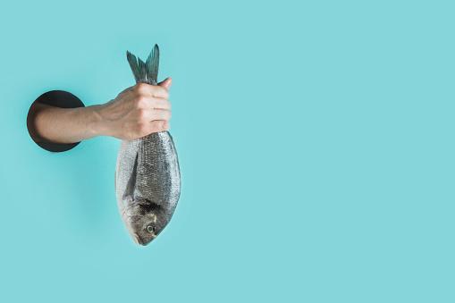 सपने में मछली मारना,  सपने में मछली मारना क्या होता है,  सपने में मछली मारते हुए देखना,  सपने में मछली मारने से क्या होता है,  सपने मे मछली मारना,  सपने में मछली मारने का क्या मतलब है,  सपने में मछली मारते देखना,  सपने में मछली मारने का मतलब,  सपने में मछली मारने,  सपने में मछली मारने का मतलब क्या होता है,  सपने में मछली मारने का अर्थ,  sapne me machli marna,  sapne me machli marte dekhna,  sapne me machli marna dekhna,  sapne me machli marte hue dekhna,  sapne me machli mari dekhna,  sapne mein machli mar na,  sapne mein machli marte dekhna,  sapne me mara machli dekhna,  sapne me machli ko marna,  sapne me machli ko marte dekhna,  sapne me mari hue machli dekhna,  sapne me machli,  sapne me machhali,  sapne me fish marna,  sapne me machli ka marna,